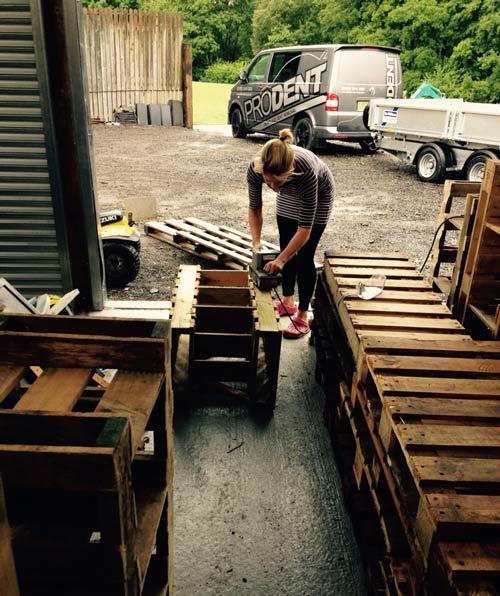 Hard at work on Eisteddfod Preparations